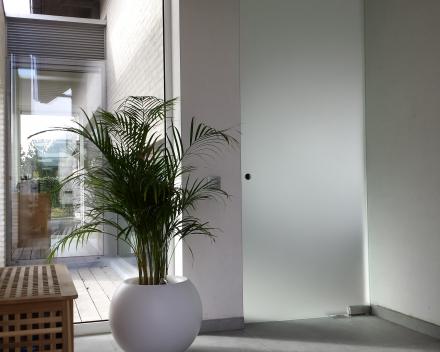 Plafondhoge glazen deur